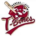 thumbs minor league baseball logo 22