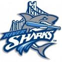 thumbs minor league baseball logo 24