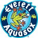 thumbs minor league baseball logo 27