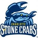 thumbs minor league baseball logo 3