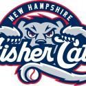 thumbs minor league baseball logo 30