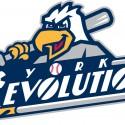thumbs minor league baseball logo 31