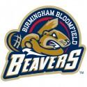 thumbs minor league baseball logo 35