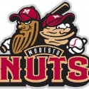 thumbs minor league baseball logo 36