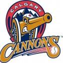 thumbs minor league baseball logo 38