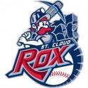 thumbs minor league baseball logo 39