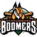 thumbs minor league baseball logo 43