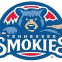 thumbs minor league baseball logo 44