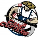 thumbs minor league baseball logo 46