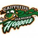 thumbs minor league baseball logo 51