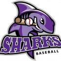 thumbs minor league baseball logo 53