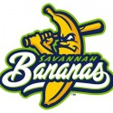 minor-league-baseball-logo-59