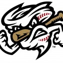 minor-league-baseball-logo-79