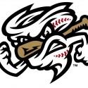 thumbs minor league baseball logo 79