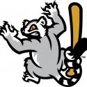 thumbs minor league baseball logo 80