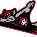 thumbs minor league baseball logo 81