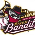 thumbs minor league baseball logo 9