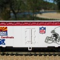 ARIZONA CARDINALS SUN