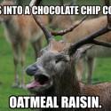 thumbs oatmeal cookie meme 04