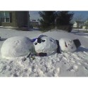 thumbs passed out 008