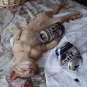 thumbs passed out 023