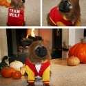 thumbs pet costumes 008