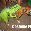 thumbs pet costumes 030