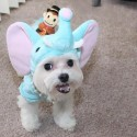 pets-in-costumes-27