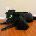 pets-in-costumes-34