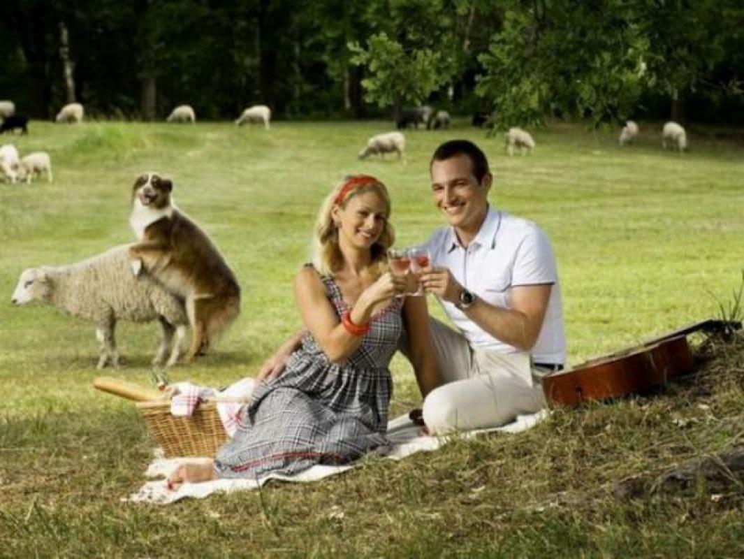 6 Celebrity Wedding Crashers | ABC News - YouTube