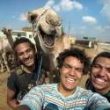 thumbs cn camel photobomb jef 141016 3x2 1600