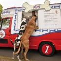 thumbs ice cream truck 057