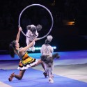 thumbs ringling bros circus 2017 baltimore 12