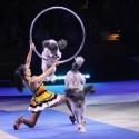 ringling-bros-circus-2017-baltimore-12