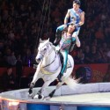 thumbs ringling bros circus 2017 baltimore 18