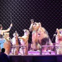 thumbs ringling bros circus 2017 baltimore 6