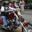 thumbs rolling thunder bikes 081