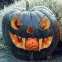 scary-pumpkins-2