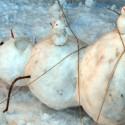 thumbs n snowman calvin hobbes 628x314