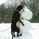 snowman-hump