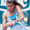 thumbs cirstea10