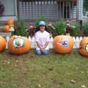 thumbs sports pumpkin 09