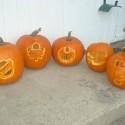 thumbs sports pumpkin 26