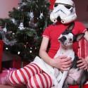 star-wars-christmas-037