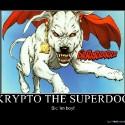 thumbs 633699259493623260 kryptothesuperdog
