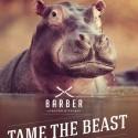 thumbs tame beast hippo
