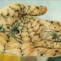spiderhand-718924.jpg