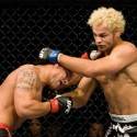 thumbs alves koscheck5