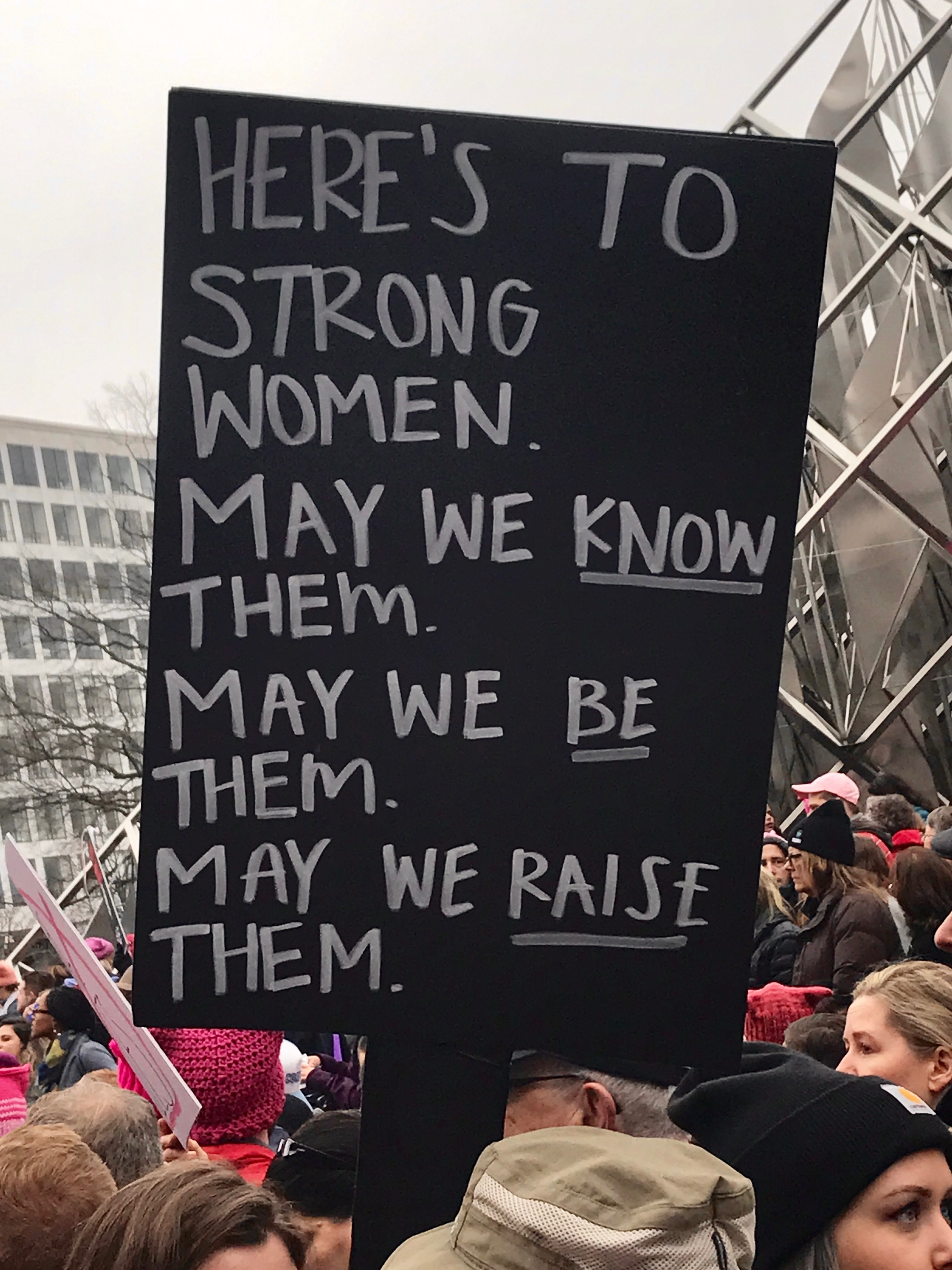 Womens March On Washington  Signs-7543