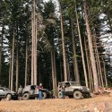 thumbs bfgoodrich outstanding trails ride 8